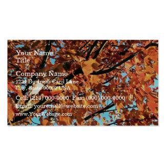 Árbol de arce rojo en otoño tarjetas de visita