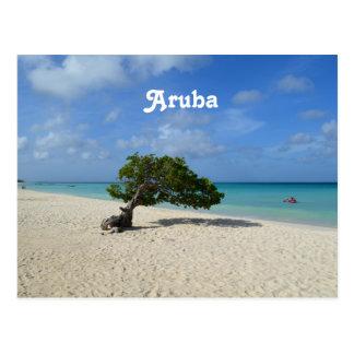 Árbol de Aruba Divi Divi Tarjeta Postal