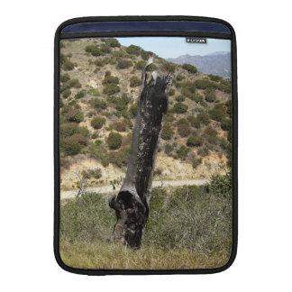 Árbol de Burt en Parque Griffith Fundas MacBook