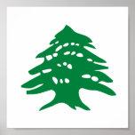 Árbol de cedro verde de Líbano Impresiones