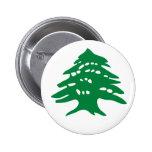 Árbol de cedro verde de Líbano Pins