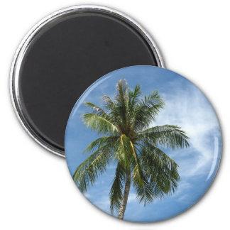 Árbol de coco imán redondo 5 cm