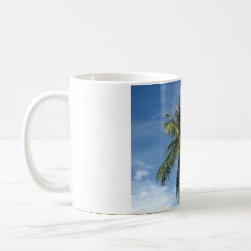 Árbol de coco taza