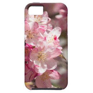 Árbol de Crabapple del día de madre iPhone 5 Fundas