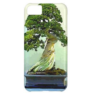 Árbol de Cypress de los bonsais Funda iPhone 5C