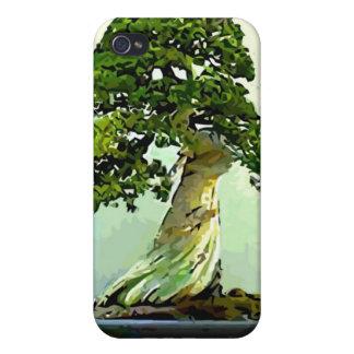 Árbol de Cypress de los bonsais iPhone 4/4S Fundas