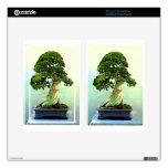 Árbol de Cypress de los bonsais Kindle Fire Pegatinas Skins