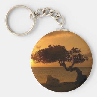 Árbol de Divi Divi de la puesta del sol de Aruba Llavero