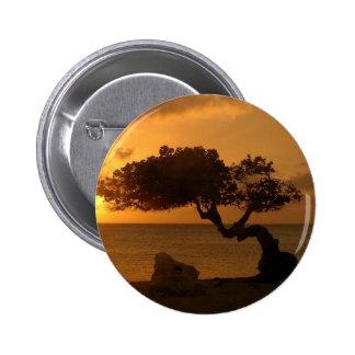 Árbol de Divi Divi de la puesta del sol de Aruba Pins