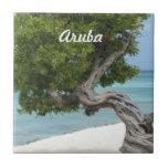 Árbol de Divi Divi en Aruba Azulejo Ceramica