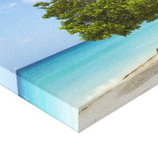Árbol de Divi Divi en la isla caribeña de Aruba Impresión En Lienzo