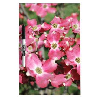Árbol de Dogwood en la floración Pizarra Blanca