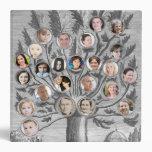 Árbol de familia antiguo - añada para arriba a 48