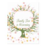 Árbol de familia floreciente postales