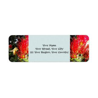 Árbol de florecimiento de Pohutukawa Etiqueta De Remite