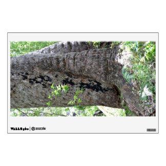 Árbol de goma roja en bosque