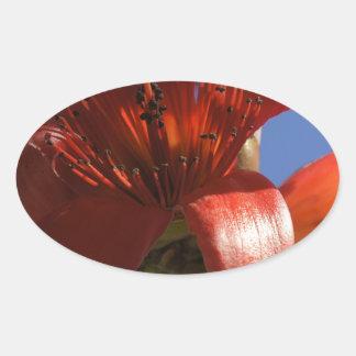 Árbol de goma rojo pegatinas de oval personalizadas