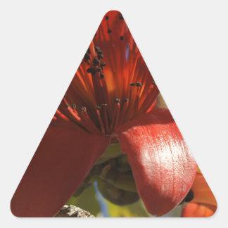 Árbol de goma rojo calcomania triangulo personalizadas