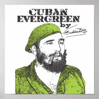 Árbol de hoja perenne cubano posters