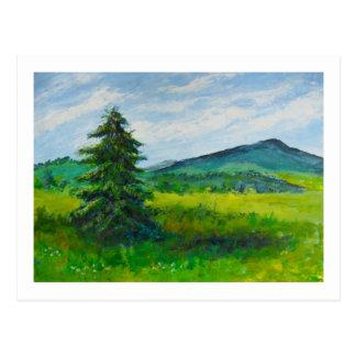 Árbol de hoja perenne del campo, pintura de tarjeta postal