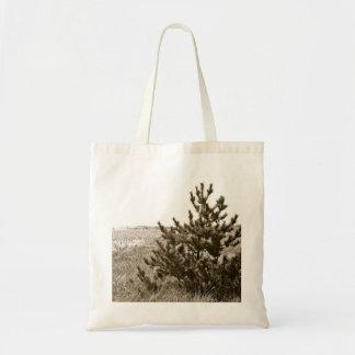 Árbol de hoja perenne en la playa bolsas