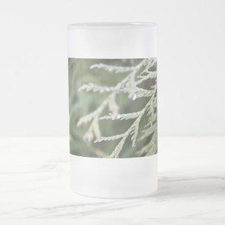 árbol de hoja perenne, hojas del ciprés taza cristal mate