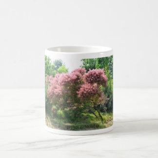 Árbol de humo púrpura tazas