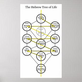 Árbol de Kabbalistic del hebreo de la vida con la  Póster
