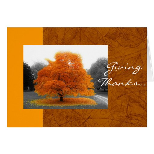 Árbol de la caída felicitacion