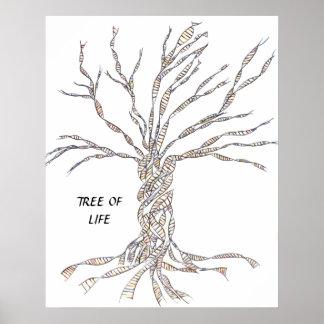 ÁRBOL de la DNA o árbol del AZUL del POSTER de la