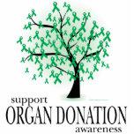 Árbol de la donación de órganos escultura fotográfica
