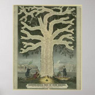 Árbol de la historia irlandesa póster