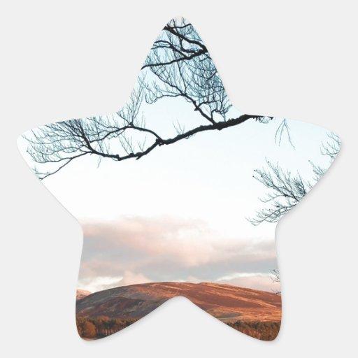 Árbol de la montaña del cielo pegatina en forma de estrella