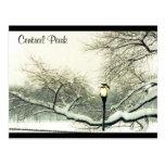 árbol de la nieve de Central Park Tarjetas Postales