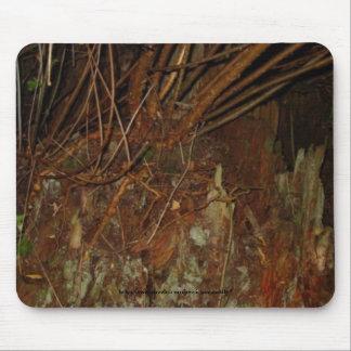 Árbol de la noche alfombrillas de ratones
