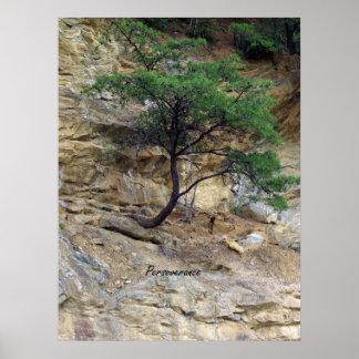 Árbol de la perseverencia póster