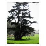 Árbol de la primavera membrete