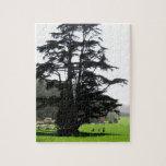 Árbol de la primavera puzzle con fotos