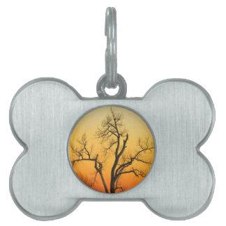 Árbol de la puesta del sol de la estación del placa de nombre de mascota