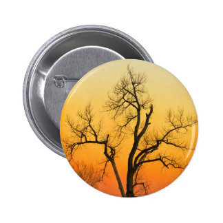 Árbol de la puesta del sol de la estación del pins