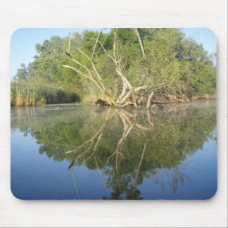 Árbol de la reflexión alfombrilla de ratón