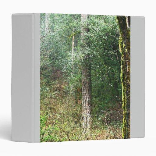 Árbol de la secoya y carpeta costeros del rastro
