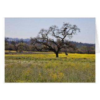 árbol de la semilla de mostaza felicitación