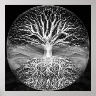 Árbol de la serenidad blanco y negro de la vida póster