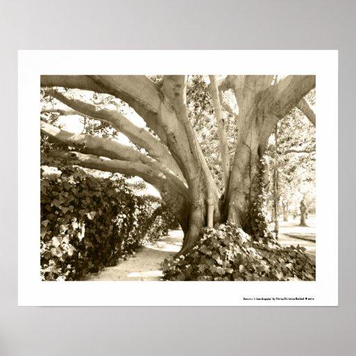 Árbol de la vida 16 x vintage retro del beige del  impresiones