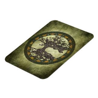 Árbol de la vida céltico imán foto rectangular