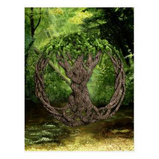 Árbol de la vida céltico postal