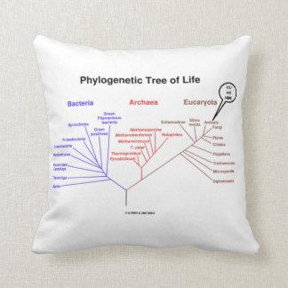 Árbol de la vida filogenético usted está aquí cojín