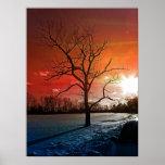 árbol de la vida impresiones