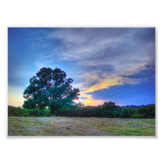Árbol de la vida arte con fotos